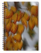 Seasonal Shiver Spiral Notebook