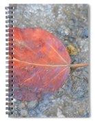Seasonal Signage Spiral Notebook