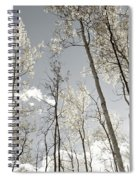 Silver Birch  Spiral Notebook