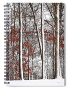 Seasons Converge Spiral Notebook