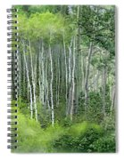 Seasons Of The Aspen Spiral Notebook
