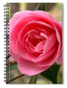 Seattle Rose Spiral Notebook