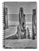 Seawall Erosion Spiral Notebook