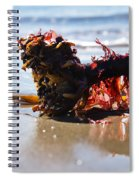 Seaweed 2 Spiral Notebook