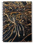 Seaweed Swamp Spiral Notebook