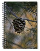 Secluded Spiral Notebook