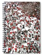 Secluded Winter Haven Spiral Notebook