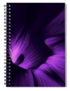 Secret Places Spiral Notebook