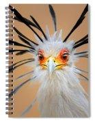Secretary Bird Portrait Close-up Head Shot Spiral Notebook