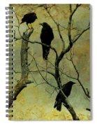 Secretive Crows Spiral Notebook