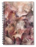 Secrets And Lace Spiral Notebook