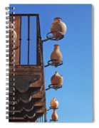 Sedona Jugs Spiral Notebook