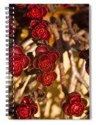 Sedum Rosettes 1 Spiral Notebook