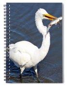 See My Catch Spiral Notebook