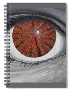 See The Symphony Spiral Notebook