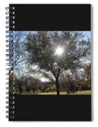 See Through Spiral Notebook