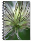 Seed Head Spiral Notebook