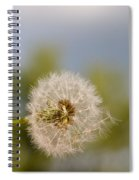Seed Lift-off Spiral Notebook
