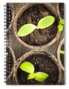 Seedlings Growing In Peat Moss Pots Spiral Notebook