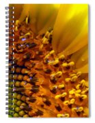 Seeds Of Sunshine Spiral Notebook