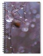 Seeds Of The Smoke Bush Spiral Notebook