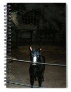 Seegrotte-2 Spiral Notebook