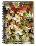 Seeing Double - Hydrangeas Spiral Notebook