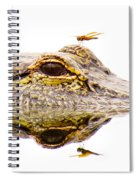 Seeing Double Spiral Notebook