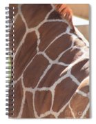 Seeing Spots Spiral Notebook