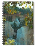 Seeing Through The Trees Spiral Notebook