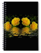 Seeing Yellow 2 Spiral Notebook