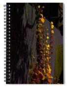 Seen In A Different Light Spiral Notebook