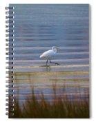 Selby Gardens_sarasota_florida 113a Spiral Notebook