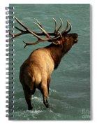 Sending A Challenge Spiral Notebook