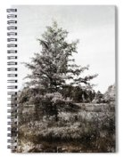 Seney Silver And Chocolate Spiral Notebook