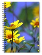 Sensational Summer Spiral Notebook