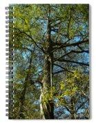 Sentinel 2 Spiral Notebook