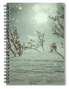Sentries Spiral Notebook