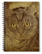 Sepia Cat Spiral Notebook