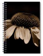 Sepia Daisy Spiral Notebook
