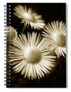 Sepia Flowers Spiral Notebook