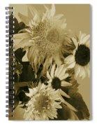 Sepia Garden Sunflower Bouquet Spiral Notebook