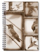 Sepia Hummingbird Collage Spiral Notebook