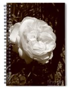 Sepia Rose Spiral Notebook