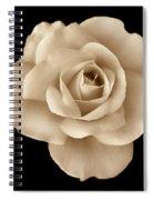 Sepia Rose Flower Portrait Spiral Notebook