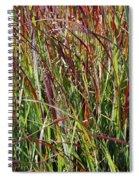 September Grasses By Jrr Spiral Notebook