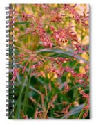 September Grasses Spiral Notebook