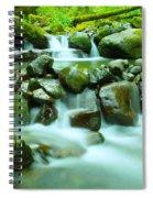 September Stream  Spiral Notebook