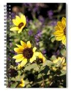 September Yellow Spiral Notebook
