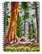 Sequoia Park - California Sketchbook Project  Spiral Notebook